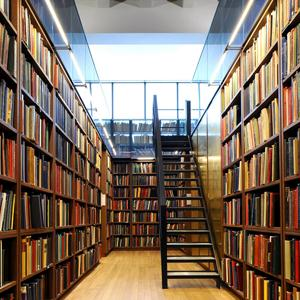 Библиотеки Верхней Тоймы